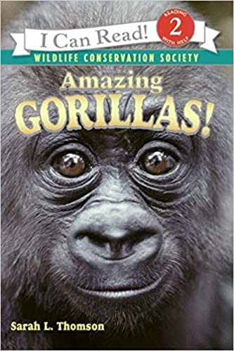 books-for-6-year-olds-amazing-gorillas