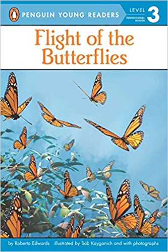 books-for-6-year-olds-flight-of-the-butterflies