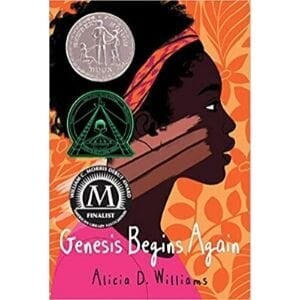 best books for 10 year olds, genesis begins again.jpg