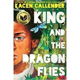 Children's Books with Black Characters, King and the Dragon Flies