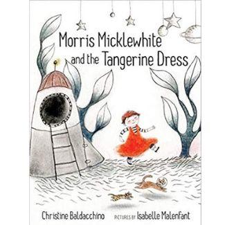 LGBT Children's Books, Morris Micklewhite