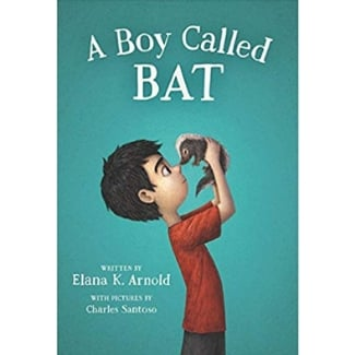 Books for Advanced Readers, second and third grade, A Boy Called bat
