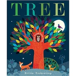 Spring Books for Children, Tree A Peek Through Picture Book.