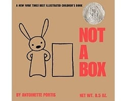 Children's Books About Imagination, Not a Box