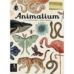 nonfiction animal books, animalium.jpg