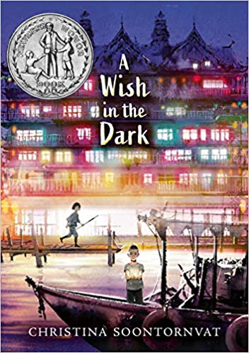 books-for-5th-graders-a-wish-in-the-dark